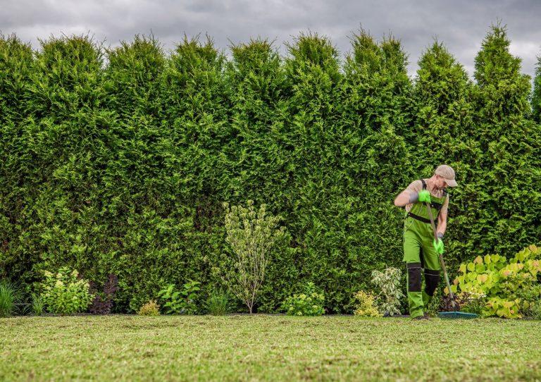 jardiner et faire du sport