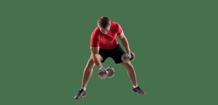 programme musculation débutant pour débutant