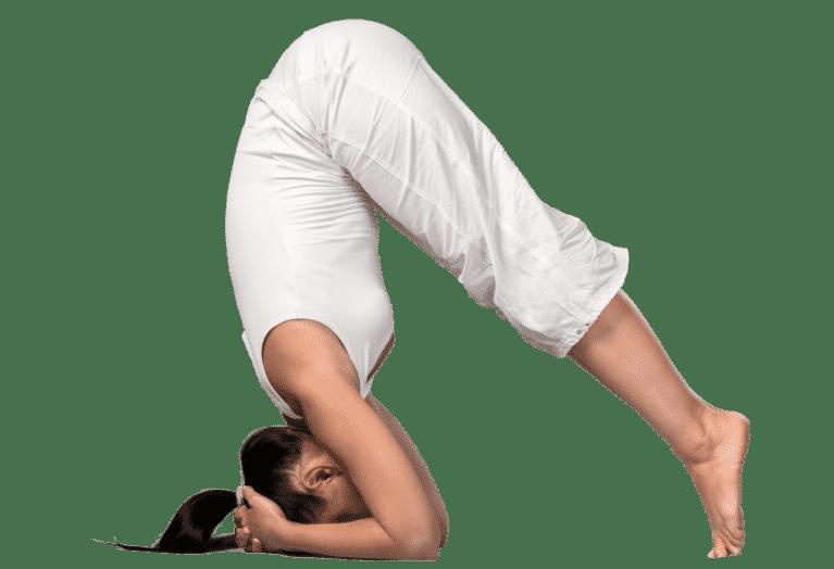 Yoga posture du chien
